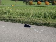 Hollenbach: Radler nach Unfall bei Hollenbach weiter in Lebensgefahr