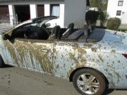 Polizeireport: Cabrio-Ausflug endet mit Gülle-Dusche