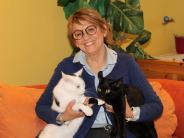Katzen: Neues Katzenhaus in Pöttmes