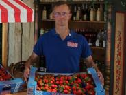Landwirtschaft: Erdbeeren, so weit das Auge reicht