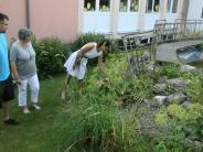 Aichach-Friedberg: Pöttmeser Schulgarten wird für Tag der offenen Gartentür herausgeputzt