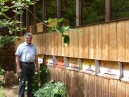 Baar: Der Bienenhaus-Streit zu Baar