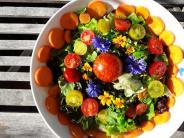 Garten-Kolumne: Freude fürs Auge und für den Magen