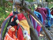Sitzung: Debatte um neuen Waldkindergarten in Handzell