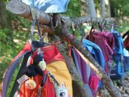 Sitzung: Noch keine Einigung beim Waldkindergarten