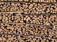 Soziales: Junger Mutter fehlt Geld für Brennholz