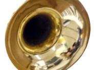 Konzert: Versiert in allen Musiksparten