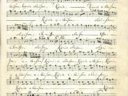 Dinkelscherben/Rommelsried: Mozarts Zeitgenosse aus Rommelsried