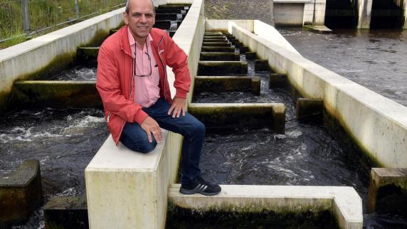 Landkreis Augsburg: Große Treppe für kleine Fische