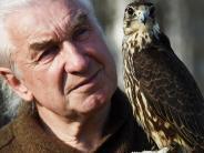 Gersthofen: Leo Mandlsperger und seine Falken sind da