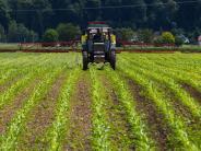 Bauernverband I: Bauern verabschieden zwei gute Ratgeber