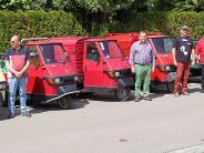Fahrzeuge: Flotte Bienen auf drei Rädern