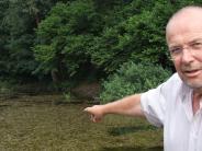 Missstand: Natur am Dorfweiher gerät in Schieflage