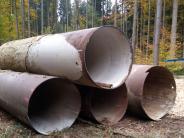 Dinkelscherben: Letzter Stresstest im Schmeller Forst