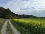 Adelsried: Können 700 Meter Feldweg 220.000 Euro wert sein?
