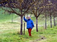 Altenmünster: Dreiste Obstdiebe räumen Bäume leer
