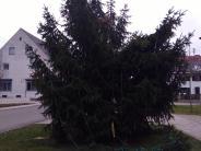 Westendorf: Nächtliche Attacke: Christbaum angesägt