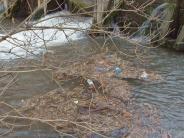 Umwelt: Müllteppich vor der eigenen Haustür