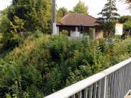 Augsburg-Bärenkeller: Stadt stellt Bahnhalt nicht aufs Abstellgleis