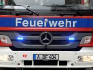 """Augsburg: Starker Wind: Feuerwehr kappt den """"Narrenbaum"""""""