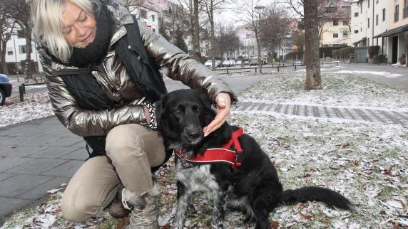 Augsburg: Wenn das Leckerli zur tödlichen Falle wird