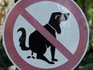 Hunde: Plastiktüte oder Zeitung: Wohin mit dem Hundekot?