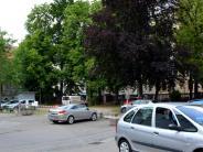 Innenstadt: Zwei Kastanien stehen Neubau im Weg