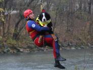 """Augsburg: Hund """"Buddy"""" ist jetzt ein echter Rettungsschwimmer"""