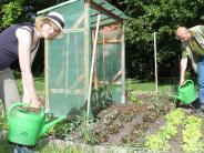 Augsburg: Der Kampf um Flächen für die Gärtner