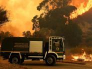 Waldbrände: Kriminelle setzen Italien in Brand
