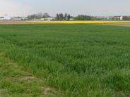 Augsburg: Ein erster Schritt zum neuen Wohngebiet in Haunstetten
