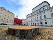 Baumfällungen: Beim Theater wird eine Straße gesperrt