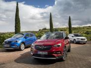 Fahrbericht: Opel Grandland X im Test: Stadt, Land, Schluss