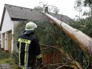 Wohnen: Die Ruhe nach dem Sturm: Check-up nach Unwetter