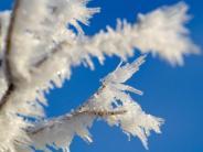 Wetter: Wenn's weiß wird: Wissenswertes über Schnee