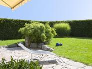 Sonnen- und Insektenschutz: Rollläden und Markisen gegen die Hitze