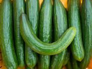 Rohkost: Bitterstoffe in Salatgurken: Wann Sie das Stielende besser abschneiden