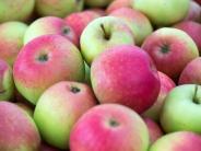 Nahrungsmittelunverträglichkeiten: Wenn Fruktose Ärger macht