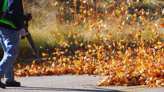 Garten im Herbst: Herbsteinsatz - Jetzt wartet im Garten jede Menge Arbeit