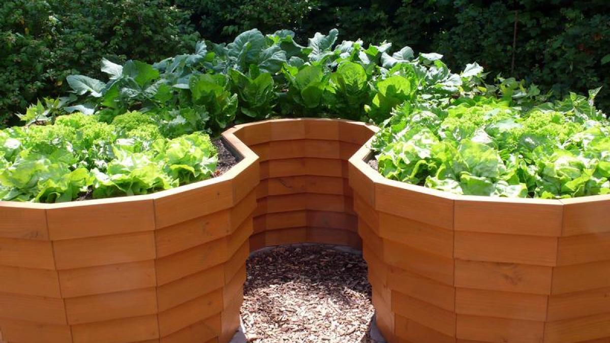 Garten Frühere Ernte, längere Saison Hochbeete richtig anlegen