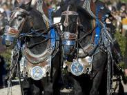 Brauchtum: Tölzer Leonhardifahrt ist Unesco-Kulturerbe