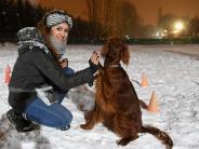 Haustiere: Wuff! Warum immer mehr Deutsche auf den Hund kommen
