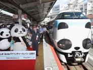 Schnellzug: Japan weiht Zug in Panda-Design ein