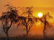 Region: Meteorologe erwartet goldene Herbsttage