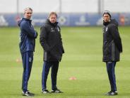 Dramen der Bundesliga: Wer steigt ab? - Brehmes Tränen, Fjörtofts Übersteiger