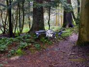 Technik: Forscher entwickeln Drohnen zur Suche nach Vermissten