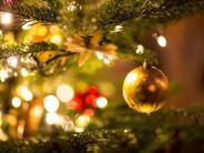 Nachhaltiger Advent: Echt, Bio-Echt oder Plastik: Wie nachhaltig ist der Weihnachtsbaum?
