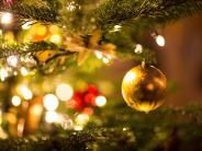 Online-Shopping: Weihnachtsbäume aus demNetz wenig gefragt