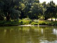 Stadtrat: Die Donau erlebbar machen