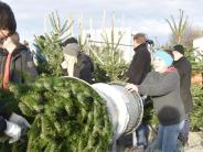 Binswangen: Wenn der Christbaum schneller daheim ist als der Käufer